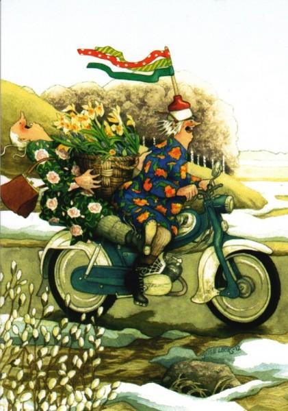 Postkarte - Spritztour